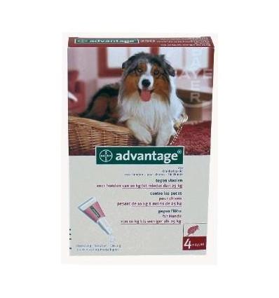 Anti-vlooienmiddel Advantage 250 meer dan 10kg